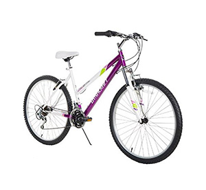 best entry level mountain bike Dynacraft Speed Alpine Eagle Womens Road